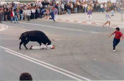 stiermord-von-tordesillas-8.jpg