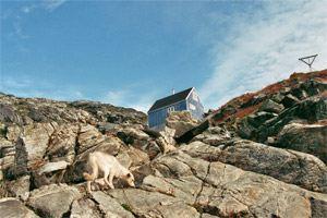 schlittenhunde-in-groenland-7.jpg