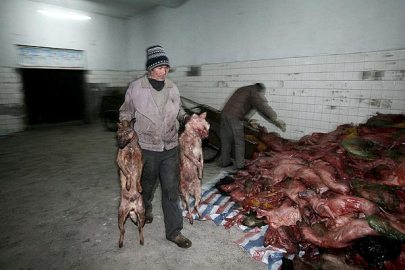 Comida China 00554001