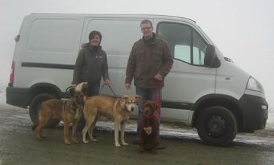 hundetransport-mit-radsport-dressel