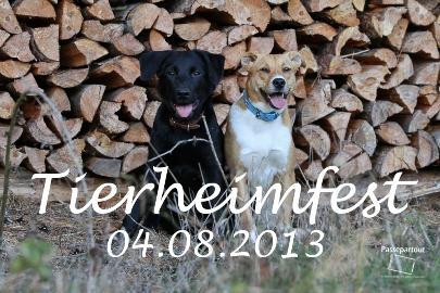 Kopie von Tierheimfest 2013