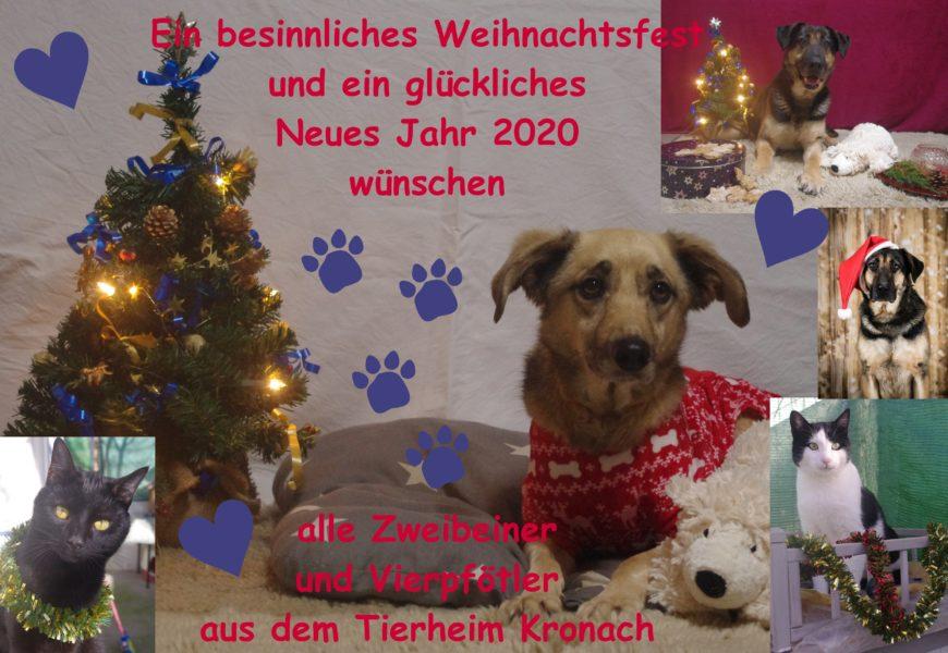 Ein besinnliches Weihnachtsfest und ein glückliches Neues Jahr 2020 wünschen alle Zweibeiner und Vierpfötler aus dem Tierheim Kronach!